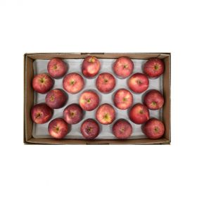 Apple Red Box 18Kg