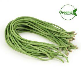 Beans Green Long Organic