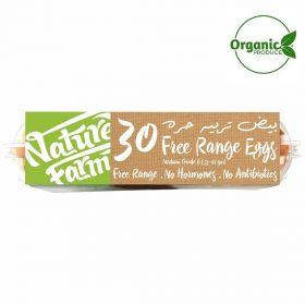 Brown Eggs Organic