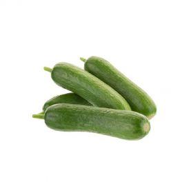 Snack Cucumber (Baby Cucumber)