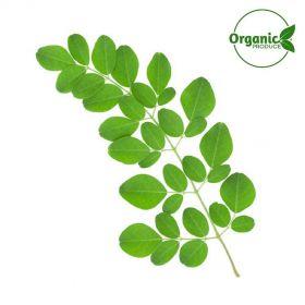 Moringa/Drumstick Leaves Organic