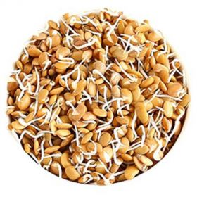 Horse Gram Sprouts (Mudira Sprouts)