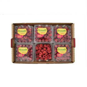 Raspberries Box (12 Pack Box)