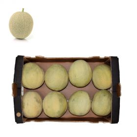 Rock Melon Box 15Kg