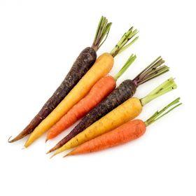 Baby Carrots Rainbow