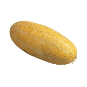 Sweet Melon (Masadi)