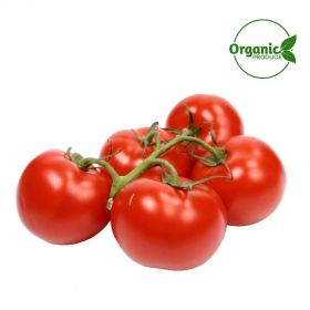 Tomato Bunch Organic