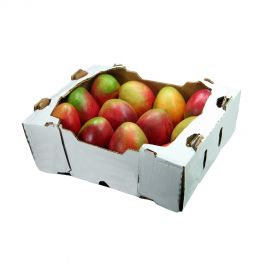 Mangoes Tommy Atkins