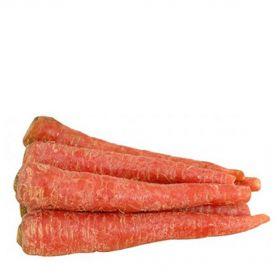 Carrot (Gajar)