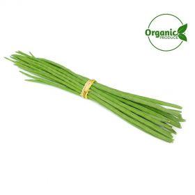 Drumstick Organic