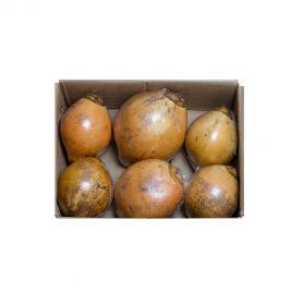 Coconut King 6 pieces