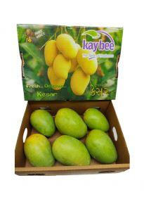 Mango Kesar Premium 1.2-1.5Kg