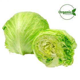 Lettuce Iceberg Organic
