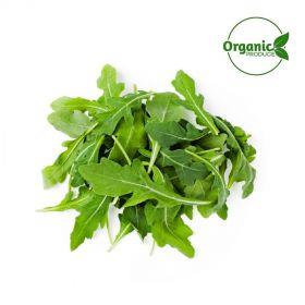 Lettuce Rocket Organic