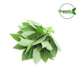 Mulukhiyah Leaves Organic