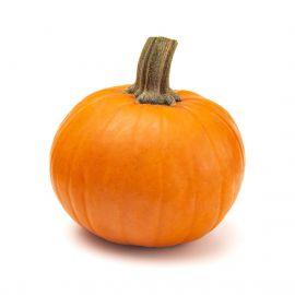 Pumpkin Wee bee little 1 Piece