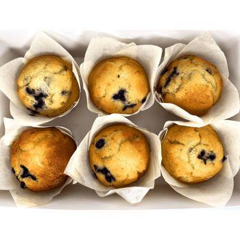 Blueberry Muffin -480g (6x80g)