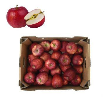 Apple Red 5 Kg