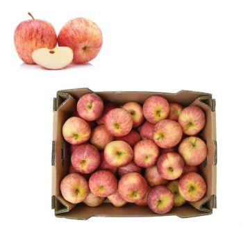 Apple Royal Gala 5 Kg