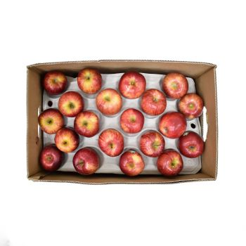 Apple Royal Gala Box 18Kg