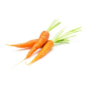 Baby Carrot South Africa 200g