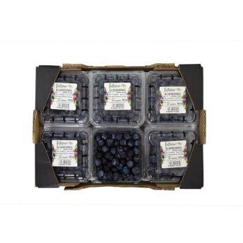 Blueberry Box (12 Pack Box)