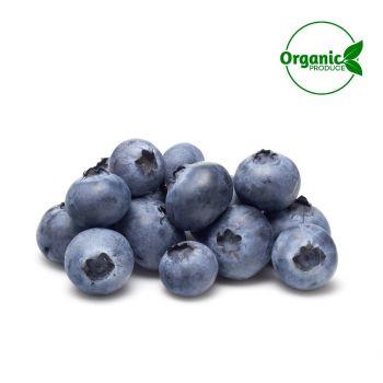 Blueberry Organic 125g
