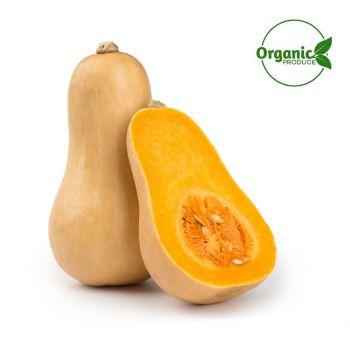 Pumpkin Butternut Organic 800-1000g