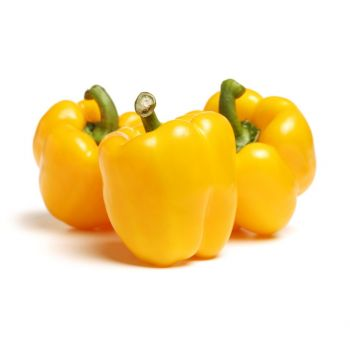 Capsicum Yellow 300-350g