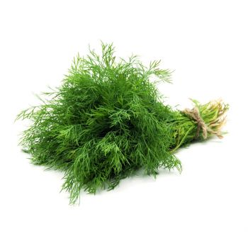 Dill Leaves 100g pack