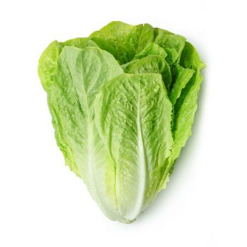 Lettuce Romaine 300-400g
