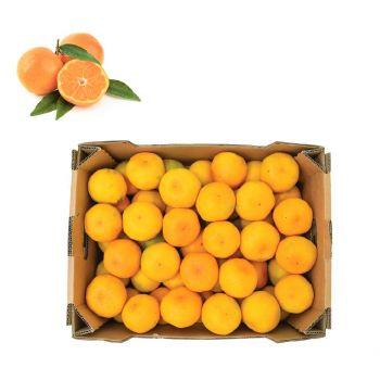 Mandarin 5 Kg