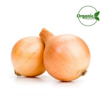 Onion Brown Organic 350g