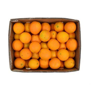 Orange Valencia Box 15Kg