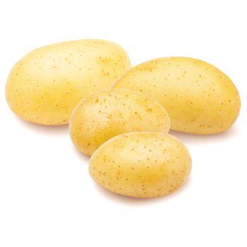 Potato Agria 500g
