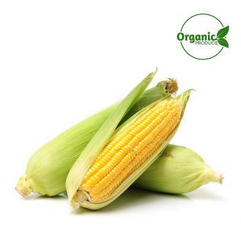 Sweet Corn Organic-500g