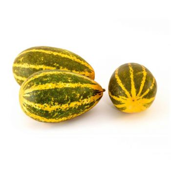 Yellow Cucumber 700-800g